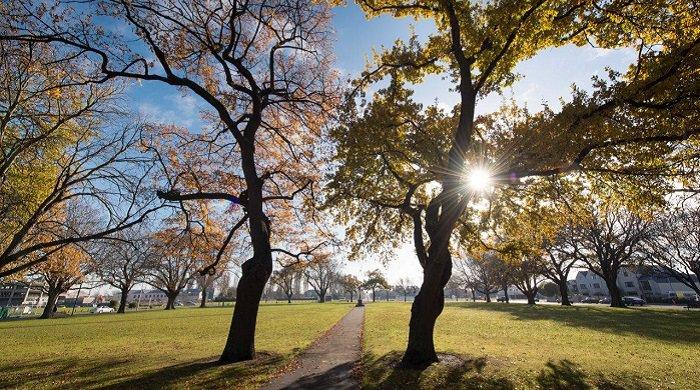 Latimer Square Copyright: Christchurch City Council