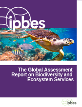global_assessment_report_draft_cover_0
